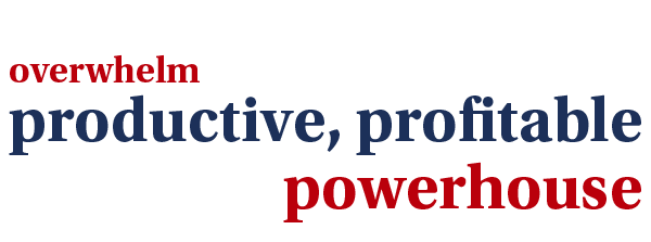 Helping your business move from overwhelm to a productive, profitable powerhouse